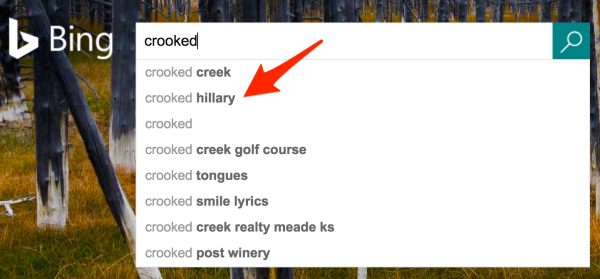 Bing crooked hillary